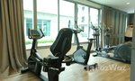 Communal Gym at Chapter One The Campus Kaset