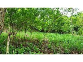 N/A Terreno (Parcela) en venta en Salango, Manabi Suavecita, Ayampe, Manabí