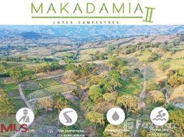 N/A Terreno (Parcela) en venta en , Caldas KM. 47 V�A MANIZALES-MEDELL�N, Manizales, Caldas