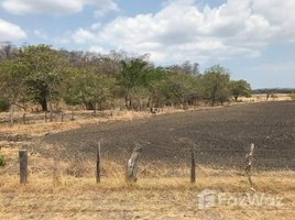 N/A Land for sale in , Guanacaste Palmira, Guanacaste, Address available on request