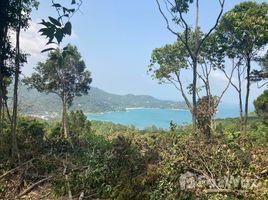 苏梅岛 Ban Tai 39 Rai, 5 Rai Division Available, Seaview, Tong Nai Pan Yai N/A 土地 售
