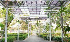 Photos 3 of the Communal Garden Area at Baan Na Cheun