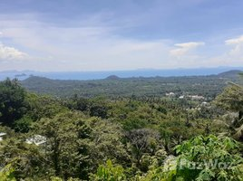 8 Bedrooms Villa for sale in Lipa Noi, Surat Thani Big Seaview Villa in 12 Rai Land in Lipa Noi