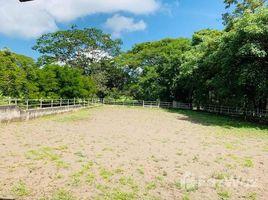 Alajuela Countryside Agricultural Land For Sale in La Ceiba, La Ceiba, Alajuela N/A 土地 售