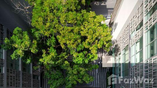 Photos 4 of the Communal Garden Area at Via Botani