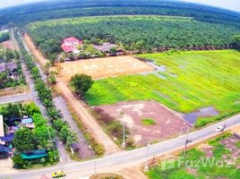 N/A Land for sale in Bueng Cham O, Pathum Thani 1-2-65.5 Rai Land in Khlong 8 for Sale