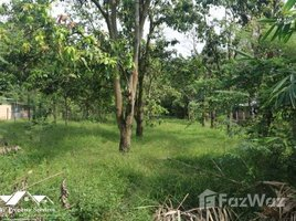 N/A Property for sale in Phum Thum, Kandal Land for Sale in Kien Svay