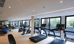 Photos 2 of the Communal Gym at Dolce Lasalle