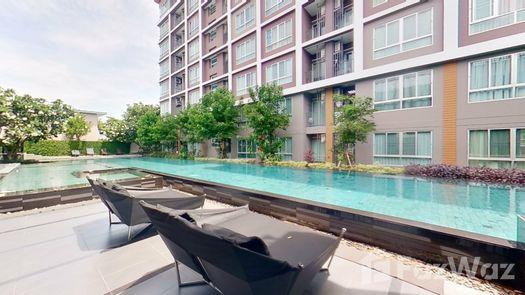 3D Walkthrough of the Communal Pool at Baan Kun Koey