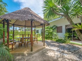 3 Bedrooms House for sale in Choeng Thale, Phuket 3 Bedroom House On 800 Sq.M Plot