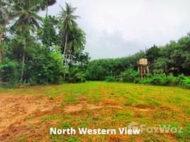 普吉 帕洛 Baan Para Land 5.5 Rai for Sale N/A 土地 售