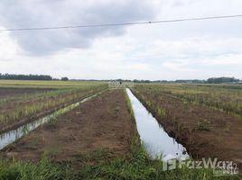 N/A Đất bán ở Vinh Thanh, Đồng Nai Đất thổ cư sẵn 150m2 mặt tiền đường 25c, sổ hồng riêng, công chứng sang tên trong ngày
