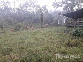 Земельный участок, N/A на продажу в , Cartago 15,950 sqm Farm Land for Sale in Cartago