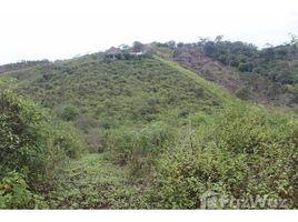 Santa Elena Manglaralto Fincas Kansia: Mountain and Near the Coast Home Construction Site For Sale in Olón, Olón, Santa Elena N/A 土地 售