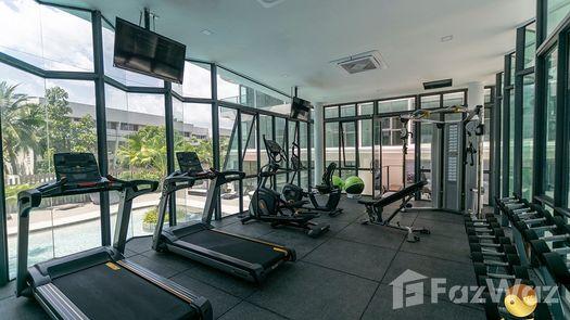 Photos 1 of the Communal Gym at Sea Zen Condominium