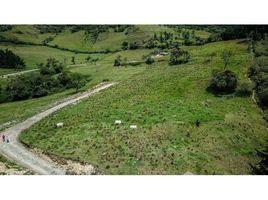 Loja Loja Countryside Development Parcel For Sale in Loja, Loja, Loja N/A 土地 售