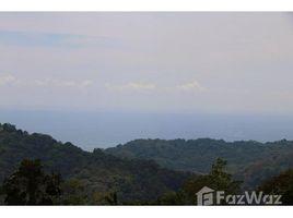 San Jose 11- acre property with incredible Valley, Mountain, and Ocean Views: Mountain Home Construction Site, Platanillo de Dominical, San José N/A 土地 售