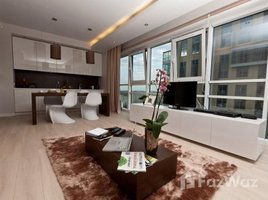 河內市 Giang Vo Platinum Residences 2 卧室 公寓 租