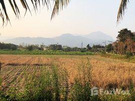 ขายที่ดิน N/A ใน แม่ไร่, เชียงราย 19 Rai Land for Sale in Mae Chan