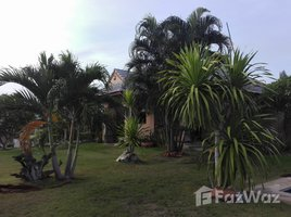 班武里府 Wang Phong Pool Villa with Mountain View in Pineapple Fields 3 卧室 房产 售