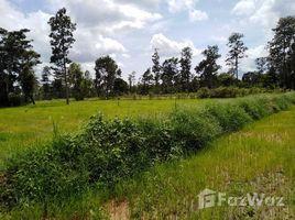 N/A Property for sale in Kut Phia Khom, Khon Kaen Land 13-1-19 Rai For Sale in Surin