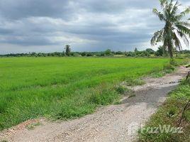 佛统 Bang Pla Huge Land Plot for Sale in Bang Len N/A 土地 售