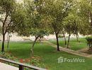1 Bedroom Apartment for rent at in Norton Court, Dubai - U818422