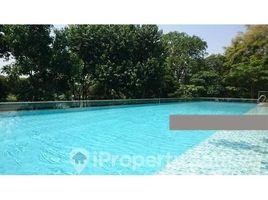 Central Region Kampong bugis Kallang Road 3 卧室 住宅 租