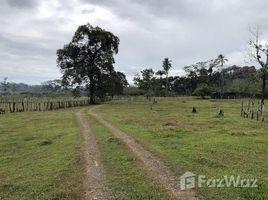 N/A Grundstück zu verkaufen in , Limon Mountain Agricultural Land For Sale in Siquirres, Siquirres, Limón