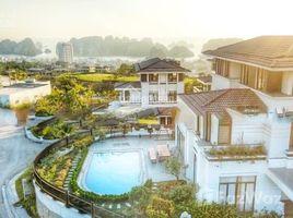 Studio Biệt thự bán ở Hồng Hà, Quảng Ninh Cơ hội cuối sở hữu biệt thự view trọn kỳ quan thế giới Vịnh Hạ Long