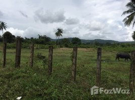 N/A Property for sale in Samrong, Preah Sihanouk Other-KH-87104