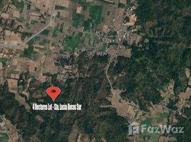 N/A Land for sale in Santa Lucia, Ilocos 4 Hectares Agricultural Lot for Sale in Sta. Lucia