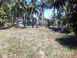 N/A ที่ดิน ขาย ใน ตลิ่งงาม, เกาะสมุย Affordable Land in Baan Phangka