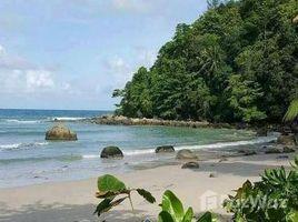 N/A Land for sale in Kamala, Phuket Kamala Land For Sale Next To Beach