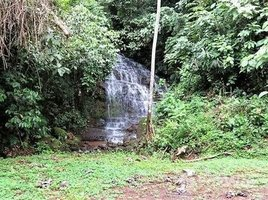 San Jose Valley of the Horses 1 & 2: Mini eco-tour property complete with waterfalls, Barú, San José N/A 房产 售