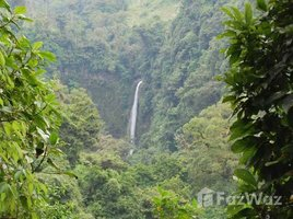 Cartago 1 Storey House for Sale with Forrest View in Turrialba 2 卧室 屋 售