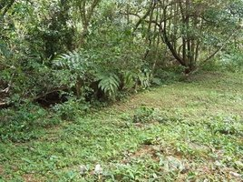 Panama Oeste Sora ASTURIAS 1013, ALTOS DEL MARIA, SORA, CHAME, PANAMA OESTE, Chame, Panamá Oeste N/A 土地 售