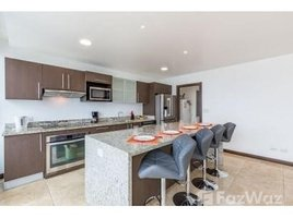 3 Habitaciones Apartamento en alquiler en , San José Apartment For Rent in Paseo Colon