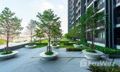 Photos 3 of the Communal Garden Area at The Tree Rio Bang-Aor