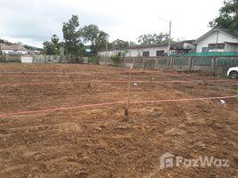 N/A Land for sale in Rawai, Phuket 619sqw Land for Sale Near Rawai Beach
