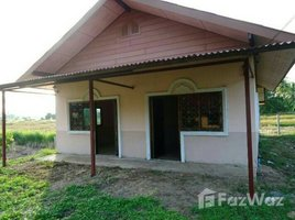 清莱 Huai Chomphu 4 Bedroom House With Land In Chiang Rai 4 卧室 房产 租