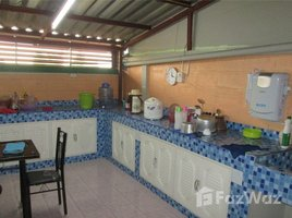 4 Bedrooms House for sale in Suan Phrik Thai, Pathum Thani House for sale