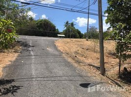 Panama Oeste San Jose FRENTE A LA ENTRADA DE PUNTA BARCO, San Carlos, Panamá Oeste N/A 房产 售