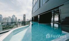 Photos 3 of the Communal Pool at Ideo Q Sukhumvit 36