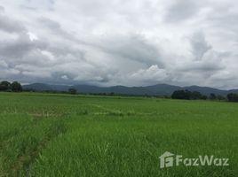 N/A Land for sale in Luang Nuea, Chiang Mai 456 Rai Land Plot For Sale in Chiang Mai