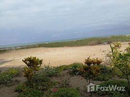 N/A Terreno (Parcela) en venta en Puerto De Cayo, Manabi Puerto Cayo: Big Oceanfront in Great location., Puerto Cayo, Manabí