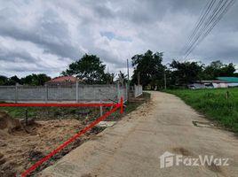 ขายที่ดิน N/A ใน สันโป่ง, เชียงใหม่ Land 100 Sqw Natural View in Mae Rim