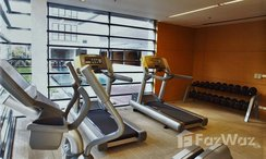 Photos 3 of the Communal Gym at Domus