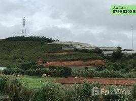 林同省 Lac Xuan Siêu phẩm 1,45 héc (DTT 1,6 hec) đất vườn mặt tiền đường chính Lạc Dương N/A 房产 售