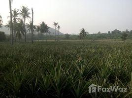 N/A Land for sale in Pak Nam Pran, Hua Hin Land For Sale Khao Kalok Pranburi2